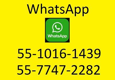 WhatsApp: 55-1016-1439 y 55-7747-2282